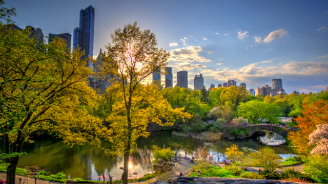 time lapse hdr of central park at fall autumn - central park manhattan stock videos and b-roll footage