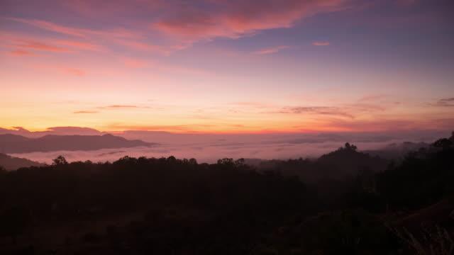 Intervalle régulier au-dessus de paysage de forêt au lever du soleil avec Brouillard épais