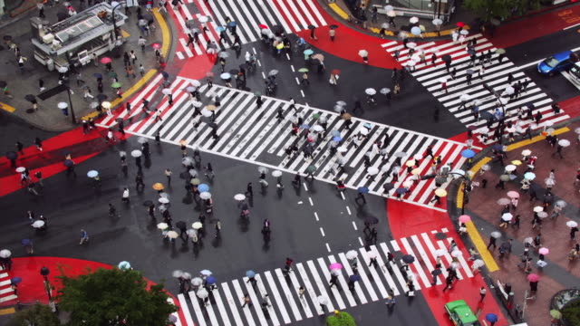 Time lapse high angle wide shot traffic and pedestrians with umbrellas in crosswalk at Shibuya Crossing / Tokyo