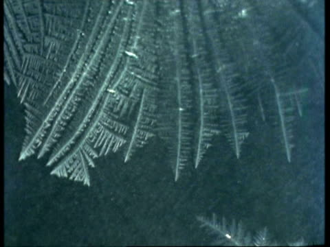 CU time lapse ice crystals growing from top to bottom of frame