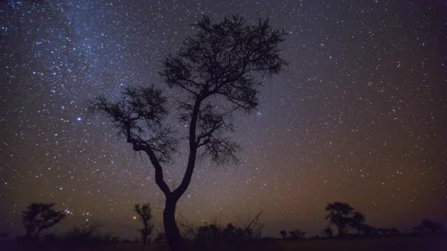 Time Lapse Kalahari Desert  Botswana  Africa