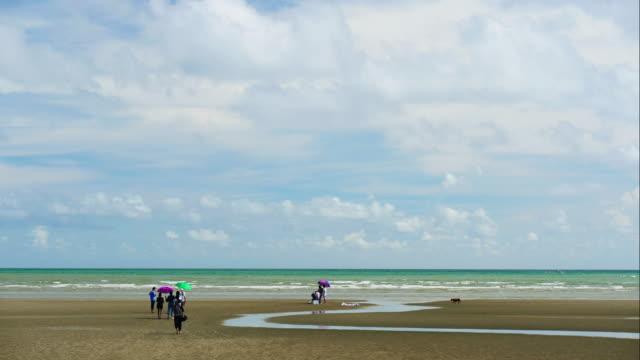 -ビーチのライフ スタイルの人々 の時間経過 - 夏休み点の映像素材/bロール