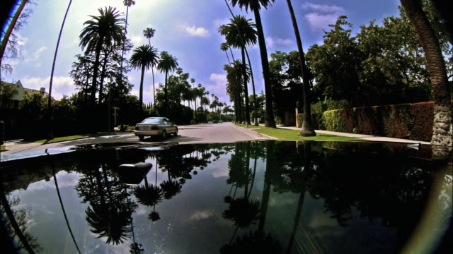 time lapse long shot car point of view driving along palm tree-lined beverly hills street / los angeles, california - bonnet stock videos & royalty-free footage
