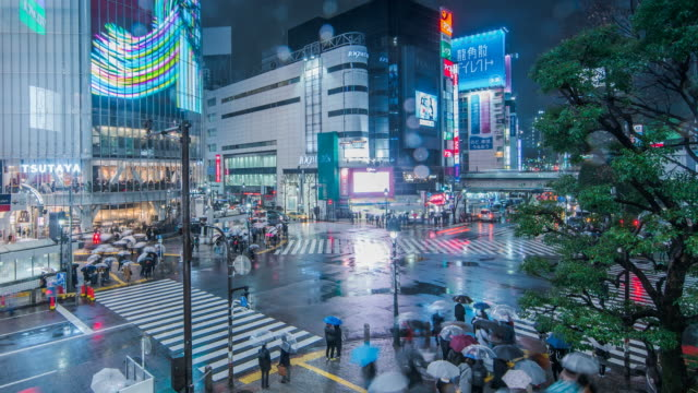 time lapse low angle view of pedestrians on shinjuku-dori avenue in east shinjuku on rainy night / tokyo, japan - bildschirmwand stock-videos und b-roll-filmmaterial