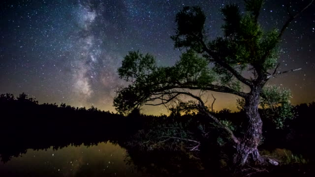 4K Time lapse - Milky Way Tree lake reflection