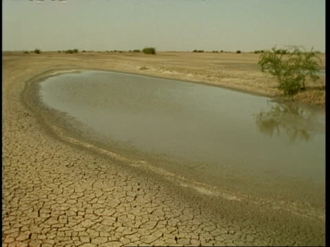 time lapse - mwa waterhole drying up in sun, gujarat, india - contracting stock videos & royalty-free footage