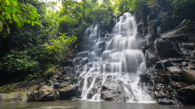 time lapse of a beautiful tropical waterfall - beauty in nature stock videos & royalty-free footage
