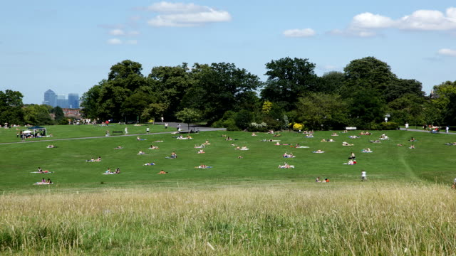 time lapse of a busy london park in summer - picnic stock videos & royalty-free footage