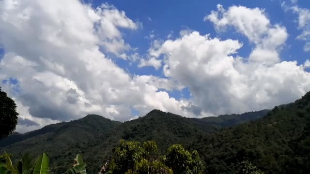 Time lapse of beautiful blue sky over rainforest