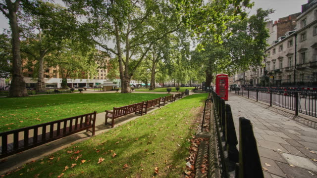 a time lapse of berkeley square and the plane trees - plain stock videos & royalty-free footage