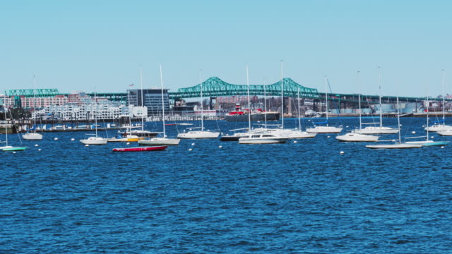 time lapse of boston harbor with many sailboat, united states - massachusetts stock videos & royalty-free footage
