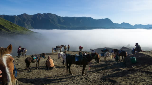 4k time lapse of bromo horsemen and foggy morning over mountain range at mount bromo, semeru, tengger national park, indonesia. - tengger stock videos & royalty-free footage