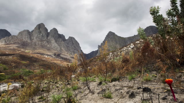 Time lapse of burnt vegetation and clouds