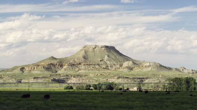 time lapse of butte in wyoming with cattle - butte rocky outcrop stock videos and b-roll footage