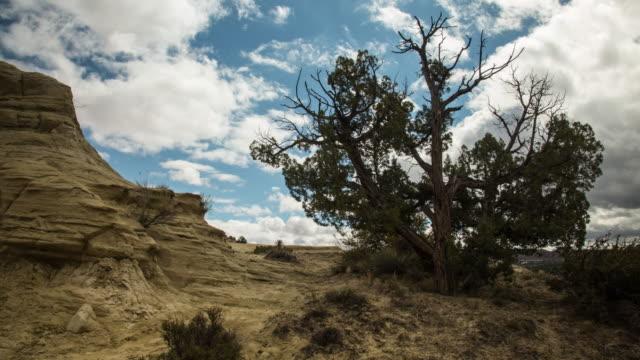 time lapse of escalante desert landscape - escalante stock-videos und b-roll-filmmaterial