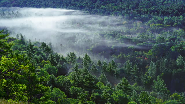time lapse of fog moving through valley - fog stock videos & royalty-free footage