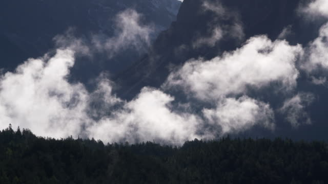 Time Lapse of Fog or low clouds with forest. Tyrol, Austria.
