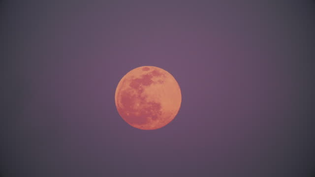 time lapse of full moon rising in february 2020 at sunset - purity stock videos & royalty-free footage