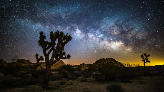 time lapse of milky way over joshua trees - joshua tree national park stock videos & royalty-free footage