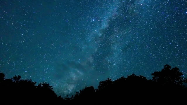 time lapse of milky way - treetop stock videos & royalty-free footage