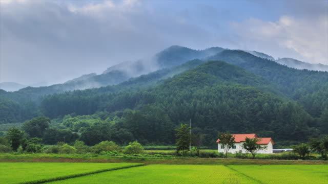 vídeos de stock e filmes b-roll de time lapse of morning fog over the mountain - cena não urbana