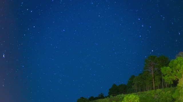 Time Lapse of Night Sky with Star and Tree on Mountain