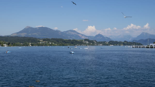 time lapse of pedal boats, boats and tourboats on lake lucerne with mount rigi in background. - lake lucerne stock videos & royalty-free footage