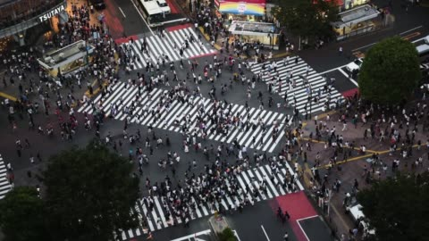 time lapse of pedestrians and vehicles passing through tokyo's shibuya crossing. - traffic time lapse stock videos & royalty-free footage