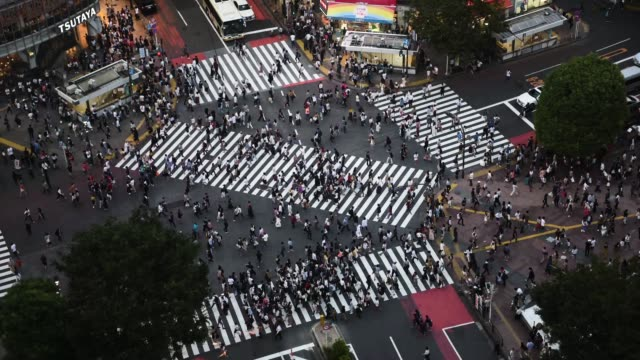 vídeos de stock e filmes b-roll de time lapse of pedestrians and vehicles passing through tokyo's shibuya crossing. - time lapse de trânsito