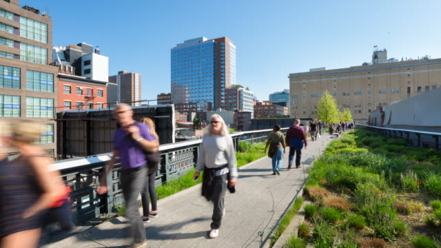 time lapse of people at high line park - attività del fine settimana video stock e b–roll