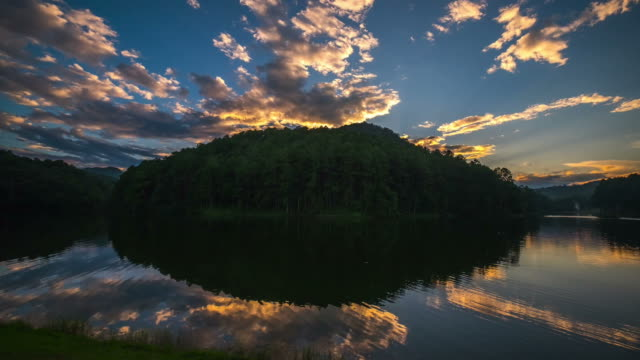 time lapse of pine forest and lake with reflection in thailand - standing water stock videos & royalty-free footage