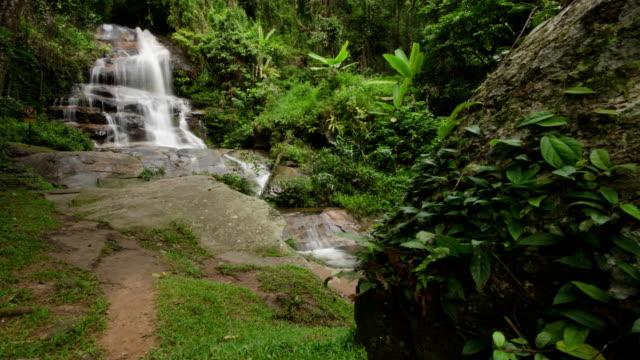 Cascade de temps Lapse of Rain forest, fond des images de nature