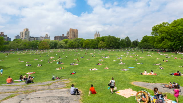 time lapse of sheep meadow in central park, rl pan - sheep meadow central park stock videos and b-roll footage