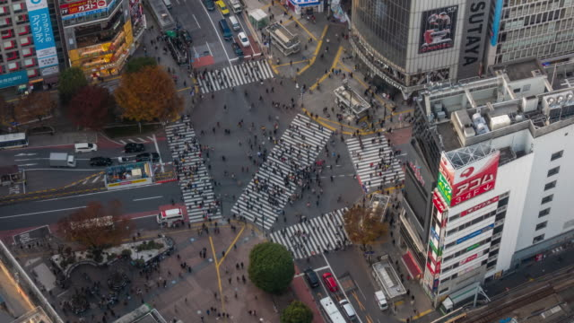 time lapse of shibuya crossing from top view at twilight in tokyo, japan - clambering stock videos & royalty-free footage