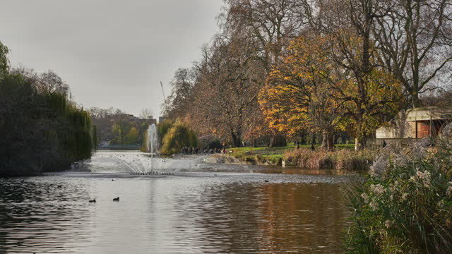 a time lapse of st james's park london in winter - water's edge stock videos & royalty-free footage