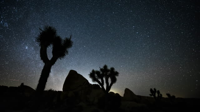 time lapse of starry sky over joshua tree desert - joshua tree national park stock videos & royalty-free footage