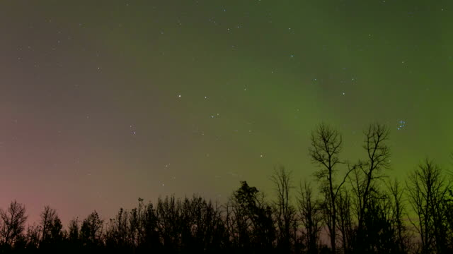 time lapse of stars and northern lights - alberta stock videos & royalty-free footage