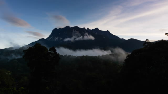 time lapse of sunrise over borneo forest - physical geography stock videos & royalty-free footage