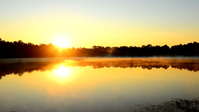 time lapse of sunrise over forest lake with swirling steam rising off water - florida us state stock videos and b-roll footage