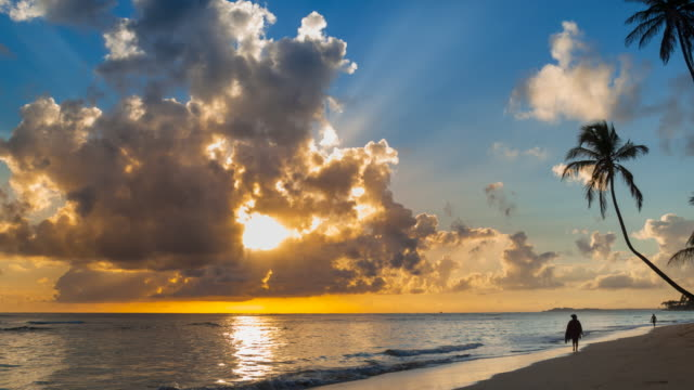 ws zi time lapse of sunrise over tropical beach and palm trees - caribbean sea stock videos & royalty-free footage
