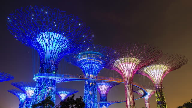 time lapse of supertree grove, marina bay gardens, singapore - marina bay singapore stock videos and b-roll footage