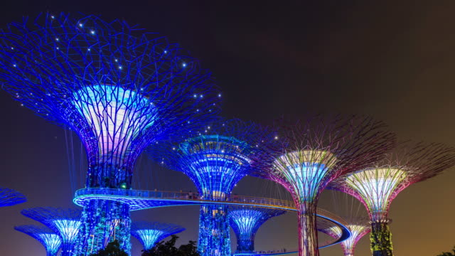 time lapse of supertree grove, marina bay gardens, singapore - south east asia stock videos & royalty-free footage