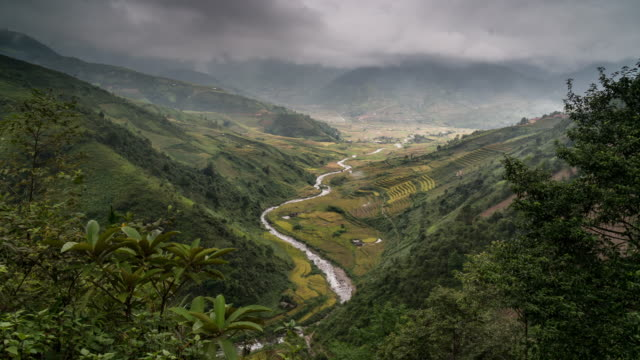 time lapse of terraced rice field when evening at tule district, yen bai province, vietnam - buffalo new york state stock videos & royalty-free footage