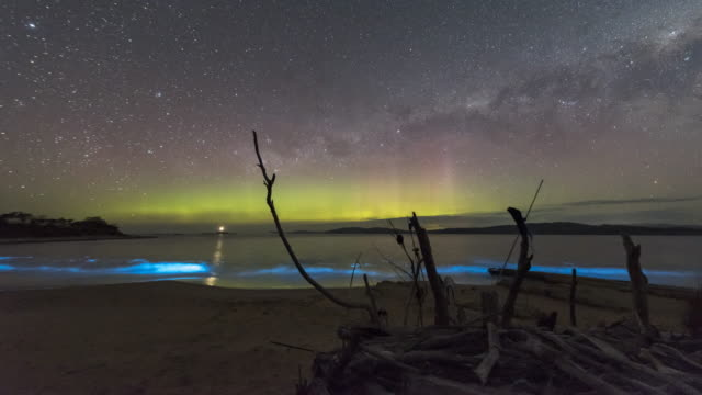 time lapse of the aurora australis or southern lights and the milky way over a beach and lighthouse in tasmania with incredible display of bioluminescence in the waves breaking on the beach, bright neon blue. - plankton stock videos & royalty-free footage