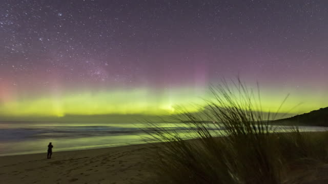 time lapse of the aurora australis or southern lights with a person watching on a beach in tasmania. - aurora australis stock videos & royalty-free footage