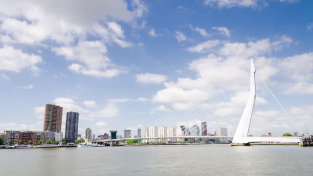hd time lapse of the famous erasmus bridge in rotterdam with cityscape - water surface stock videos & royalty-free footage