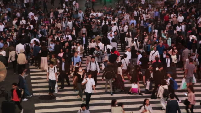 Time lapse of the famous scramble crossing in Shibuya Tokyo at night taken from elevated view point during travel vacations in the city.