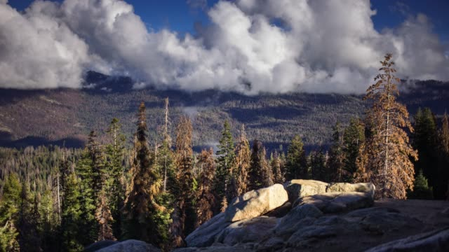 time lapse of thick cloud over kings canyon - sequoia stock videos and b-roll footage
