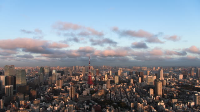 time lapse of tokyo tower at dusk - roppongi hills stock videos and b-roll footage