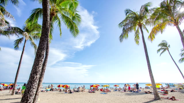 vídeos y material grabado en eventos de stock de lapso de tiempo de la playa de waikiki en hawai - honolulu